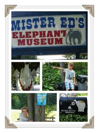 Mister Ed's 1