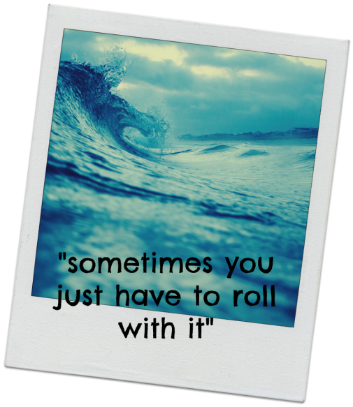 roll with it waves polaroid